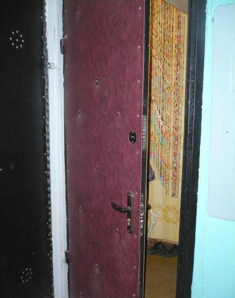 металлическая дверь фрунзенская
